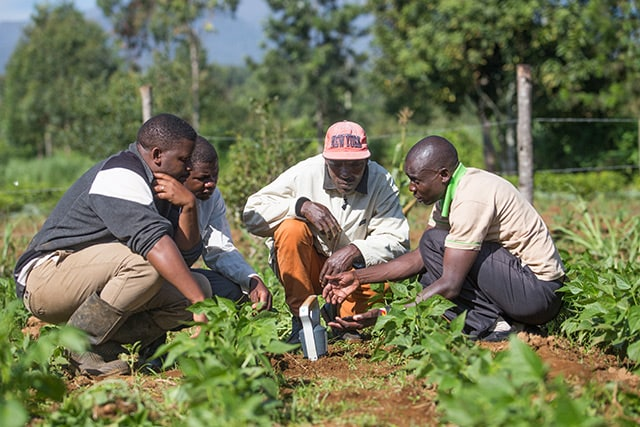 Farmers in Kenya dramatically improve their production