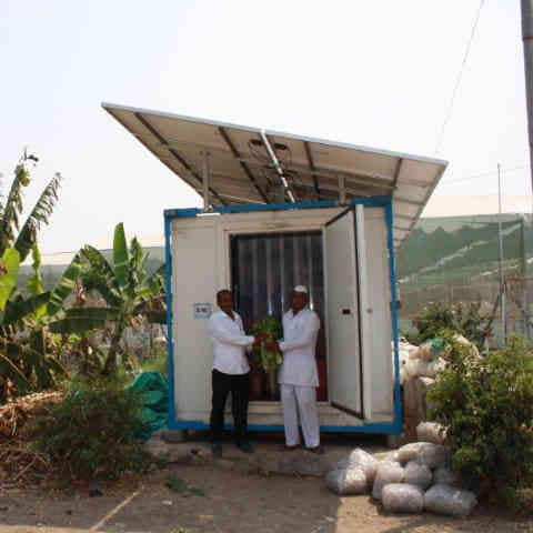 growing ideas solar fridge fights farm level food loss