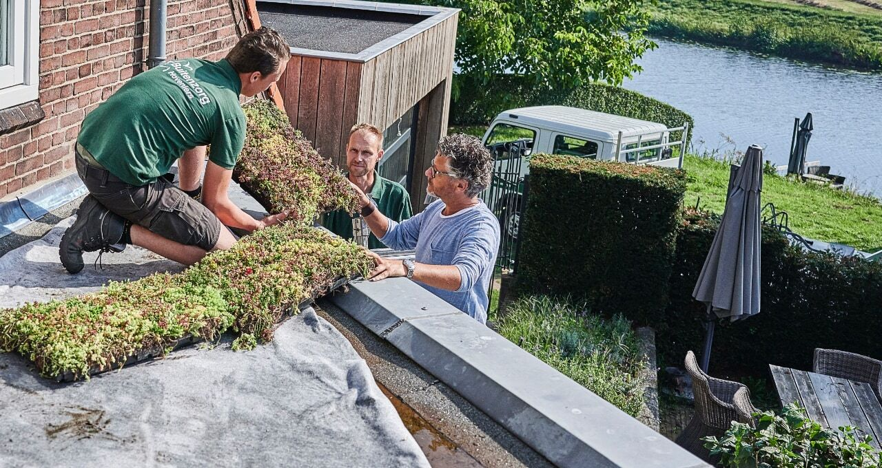 Three men isolating a roof with plants
